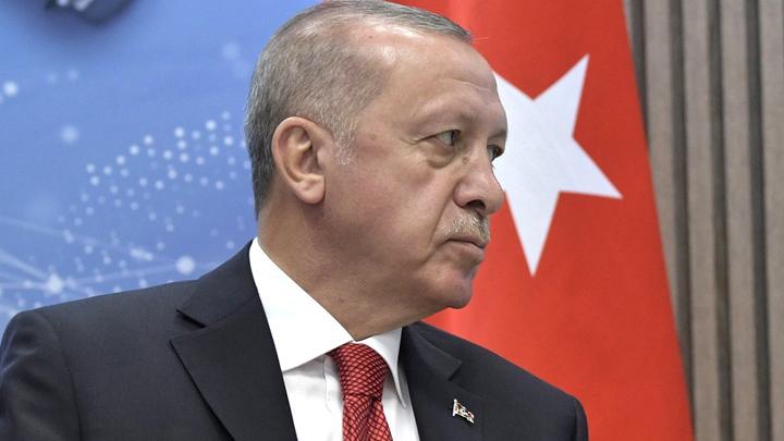 Как изменится Сирия после турецкой операции