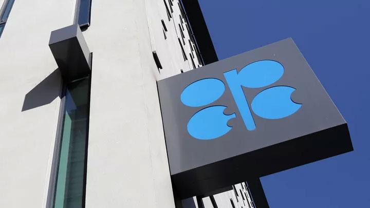 Трамп против ОПЕК: Что будет с ценами на нефть?
