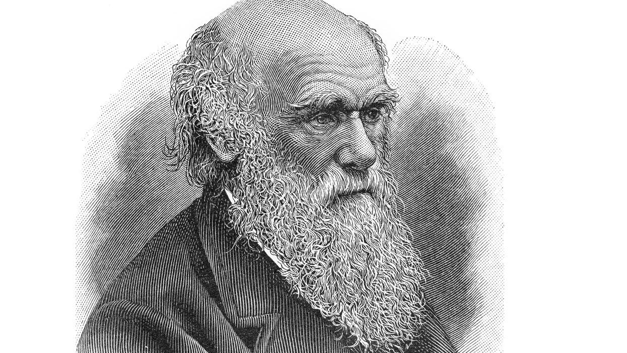 Дарвин-дарвинизм