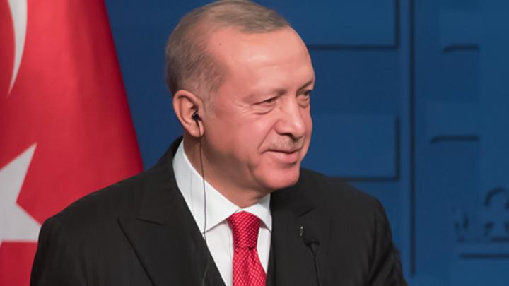 Дайджест СМИ: Трамп пытается купить Эрдогана, у Боливии появился временный президент