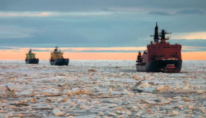 Арктика приходит во время еды