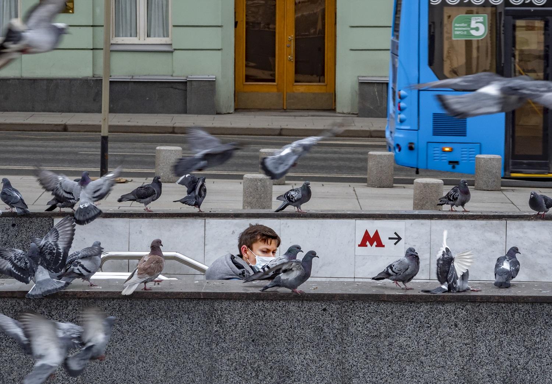 """Коронавирус в России: """"Русский сценарий"""" отличается от любого другого. Почему?"""